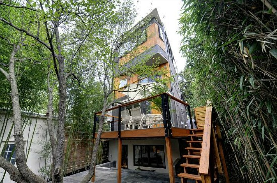 This Week's Find: A Georgetown Treehouse: Figure 2
