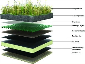 How To Green Your Roof In Dc