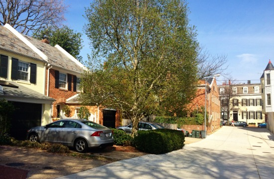 DC's Hidden Places: Georgetown's Orchard Lane: Figure 2