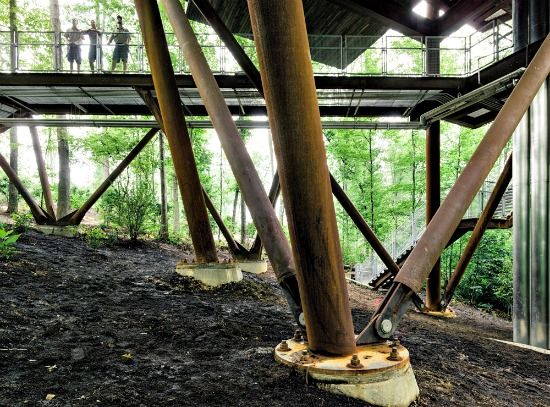 West Virginia Takes the Treehouse to a New Level: Figure 4