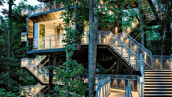 West Virginia Takes the Treehouse to a New Level: Figure 1