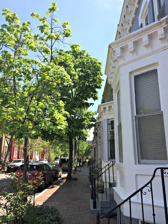 DC's Hidden Places: French Street: Figure 4