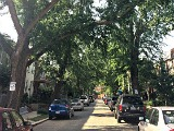DC's Hidden Places: Warren Street NE