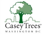 DC Homeowners: Plant a Tree, Save Money Long Term