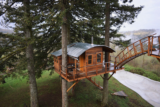 The Adult Three-Part Treehouse: Figure 3