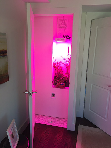 Dc S Newest Condo Amenity A Marijuana Grow Closet