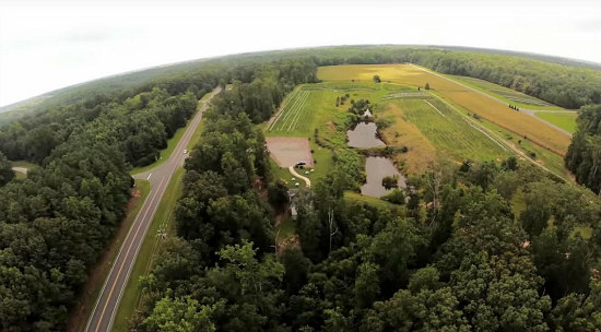 39 Acres, Mature Vineyards and a Tasting Room: Virginia Winery To Hit the Auction Block: Figure 1