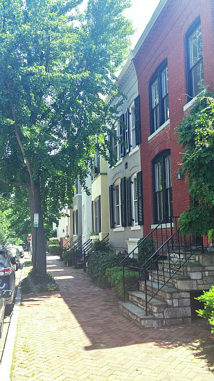 DC's Hidden Places: Olive Street: Figure 4