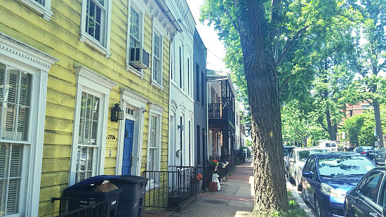 DC's Hidden Places: Olive Street: Figure 2