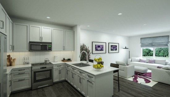 Attend the Grand Opening of Fairfax's Luxury Condo The Enclave: Figure 2