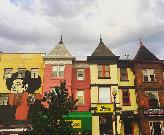 Adams Morgan: From Adolescence to Adulthood: Figure 1