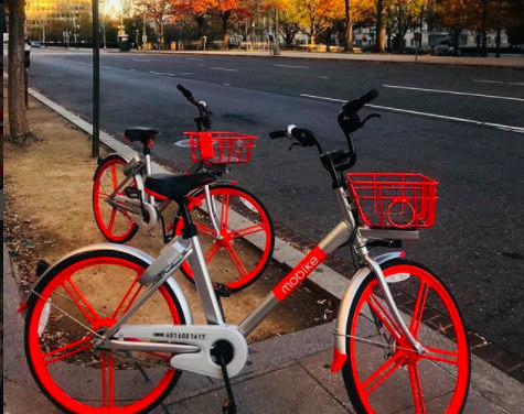 Convenience or Obstruction? DC Residents Sound Off on Dockless Bikes: Figure 1