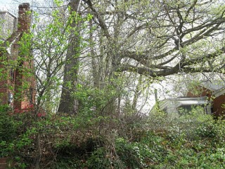 Why Are Vacant Lots Hitting the Market in DC for $70,000?