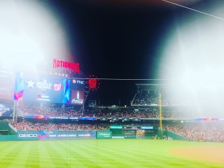 12 Million Strong? An Analysis of the Nats Fan Base